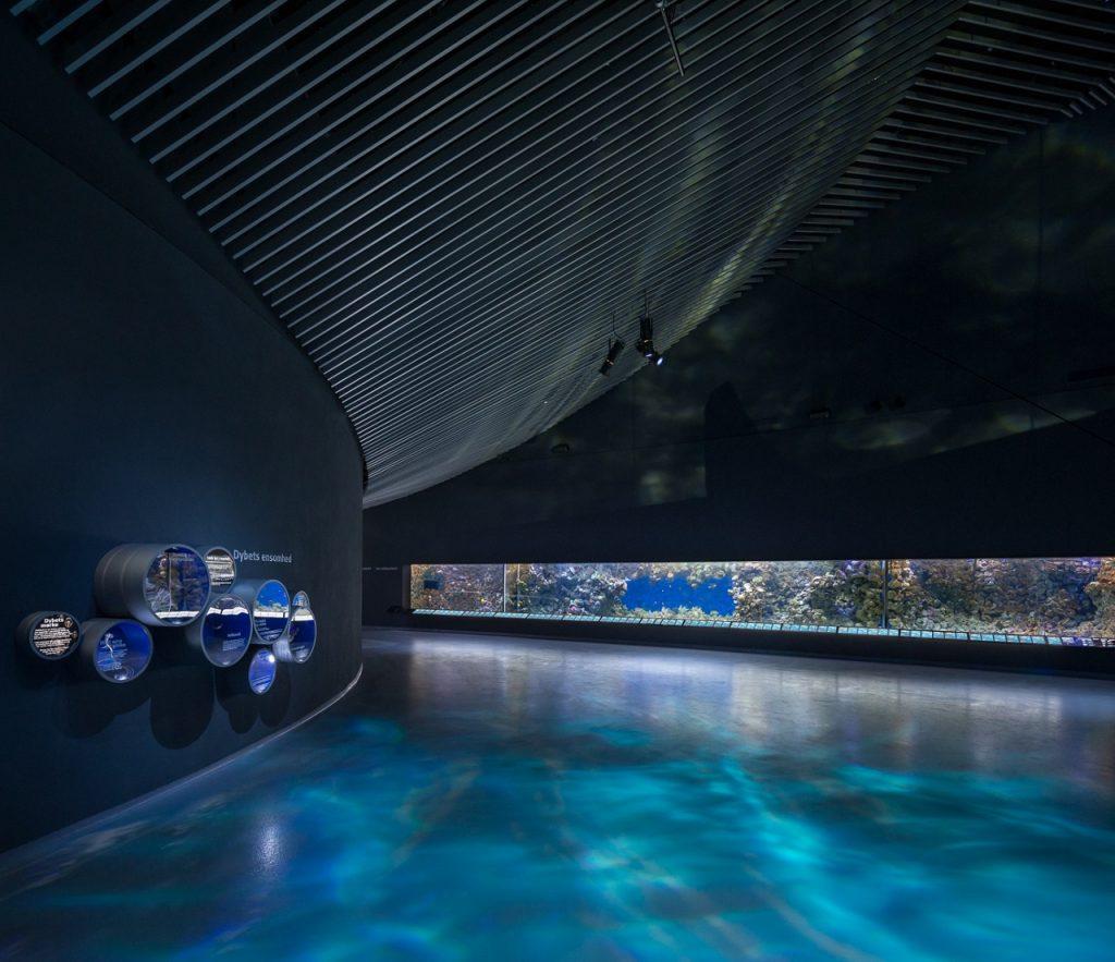 Metallic Epoxy flooring at an aquarium