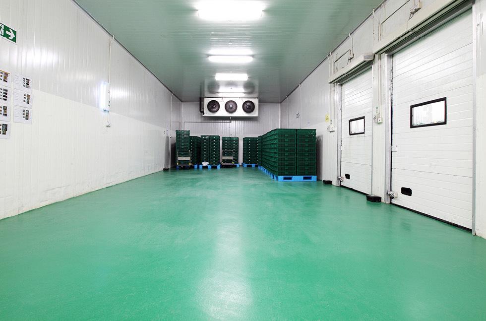 Cold Storage2