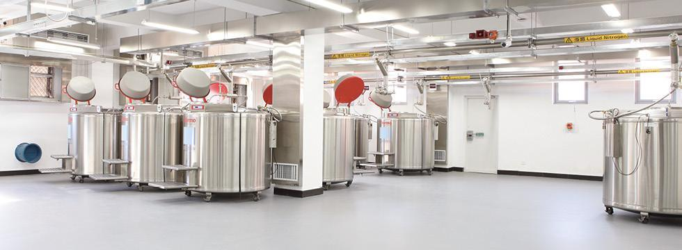 Choosing Flooring For Laboratory And Testing Facilities